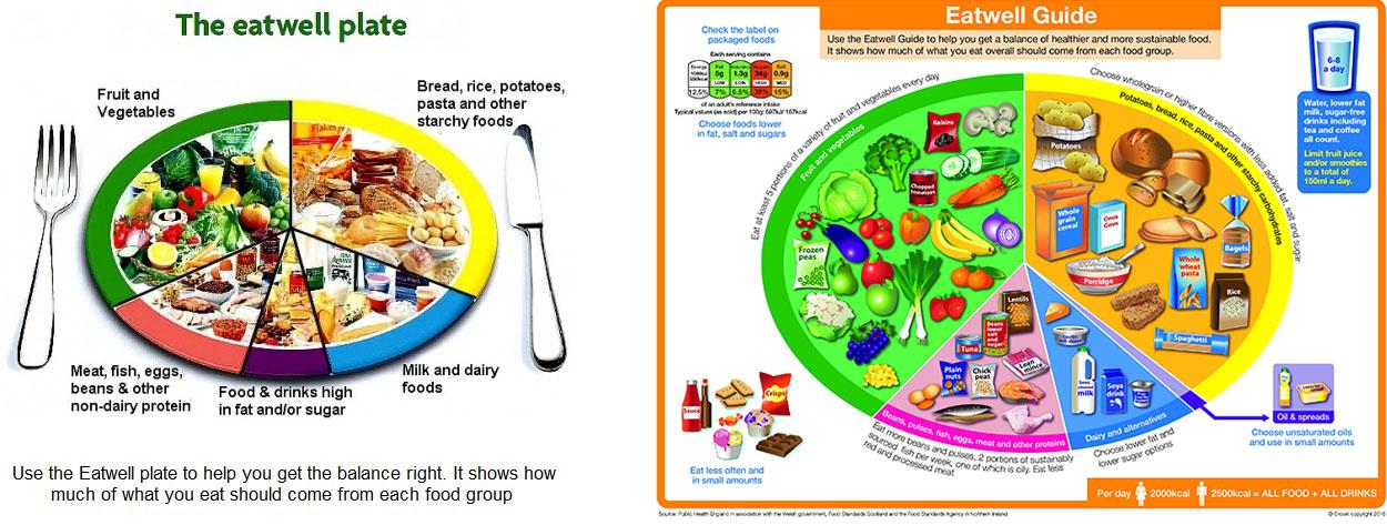 Foods High In Sat Fat