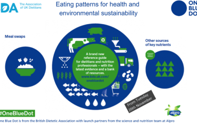 The BDA's ground-breaking One Blue Dot campaign for sustainable diets