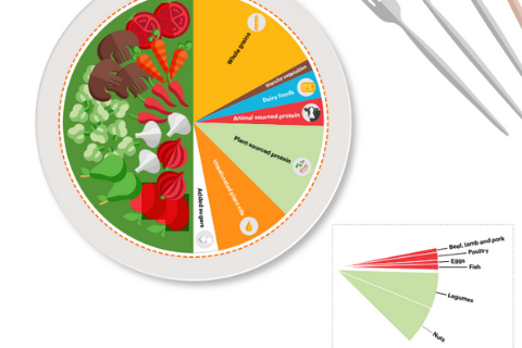 EAT-Lancet recommendations for health and planet